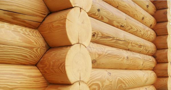 Обновленная древесина